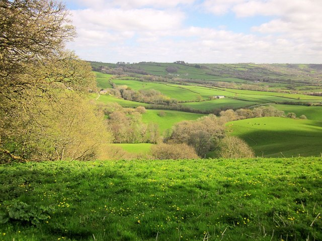 5 Things to Know About Dorset